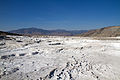 Mammoth Hot Springs 16 (8039032845).jpg