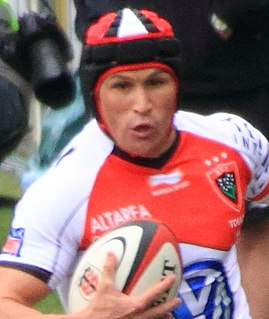 Matt Giteau Australian rugby union player