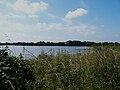 Mauzé-Thouarsais étang Juigny (1).JPG