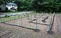 Maze 2011 (5788298028).jpg
