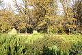 McConnell Arboretum & Botanical Gardens - Redding, California - DSC03016.JPG