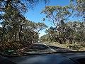 Melbourne 2012 - panoramio.jpg