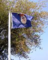 Merchant Marine Flag in Point Park.jpg