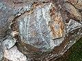 Metamorphosed pillow basalt (Ely Greenstone, Neoarchean, ~2.722 Ga; large loose block at Ely visitor center, Ely, Minnesota, USA) 11 (20830752274).jpg