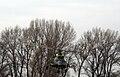 Mi-8 1.jpg