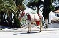 Mijas donkeys 03.jpg