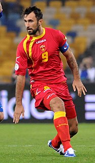 Mirko Vučinić Montenegrin footballer