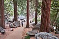 Mist Trail Footbridge.jpg