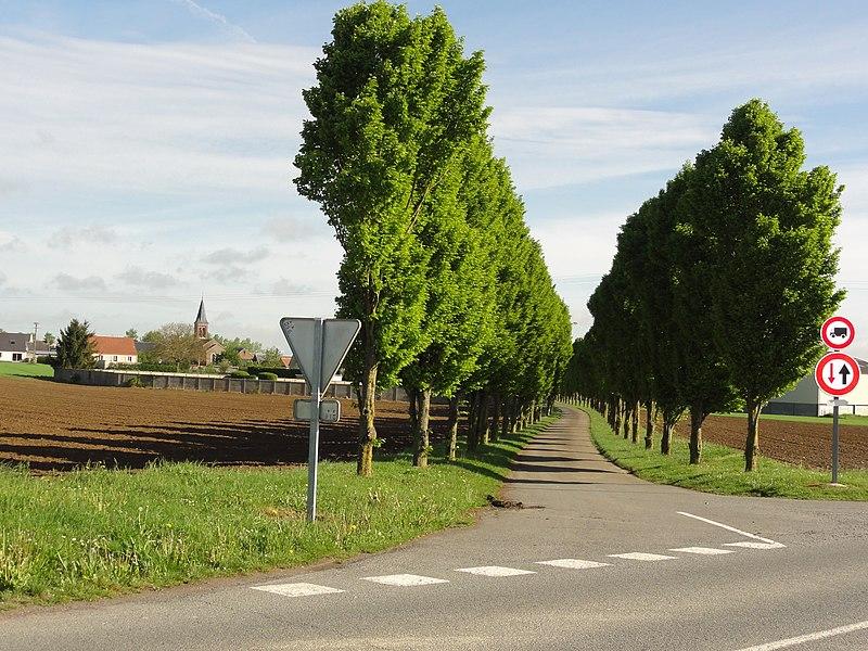 Monceau-le-Waast (Aisne) vue sur le village