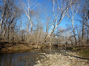 Clear Creek (Salt Creek) - Clear Creek near Dillman Rd (Perry Township)