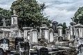 Mount Jerome Cemetery - 131441 (36236670561).jpg