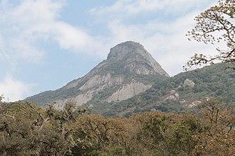 Mount Longido - Image: Mount Longido view of the summit