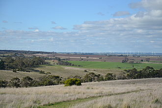 Mount Mercer Wind Farm - Mount Mercer wind farm viewed from Colac Ballarat Road