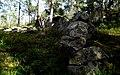 Murlämningarna på Nätersjöberget, Sidensjö, Sverige, under inventering av arkeolog Carl L. Thunberg 2012. (The ancient wall on Nätersjöberget, Sidensjö, Sweden, during inventory by archaeologist Carl L. Thunberg 2012.).jpg