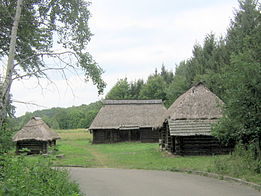 Museum of Folk Architecture and Ethnography in Pyrohiv - old wooden building - 2410-1.jpg