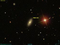 NGC 0243 SDSS.jpg