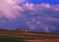 NRCSCO02006 - Colorado (1587)(NRCS Photo Gallery).jpg