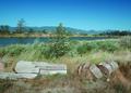 NRCSOR00033 - Oregon (5763)(NRCS Photo Gallery).tif