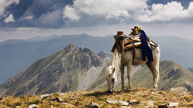 Fifth prize: Mount Krchin, Mavrovo National Park, Republic of Macedonia | by Martin Dimitrievski