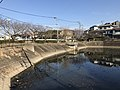Nagauraike Pond 20170228-3.jpg