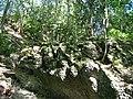 Nagelfluh Ablagerungen - panoramio.jpg