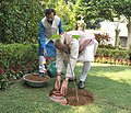 Narendra Modi planting a Kadamb sapling (Neolamarckia Cadamba), at the Race Course Road lawns, to mark the occasion of the World Environment Day, in New Delhi. The Minister of State for Environment (2).jpg