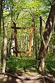 Nationalpark Hainich-Erlebnispfad Feensteig-by-Leila-Paul-IMG 3975 11.JPG