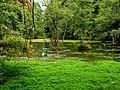 Naturdenkmal Almequelle HSK - 093 fd.jpg