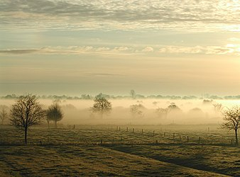 Nebelostfriesland