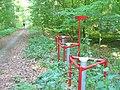 Nedlitzer Holz - geo.hlipp.de - 40857.jpg