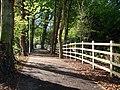 New cycle track, near Brixham - geograph.org.uk - 1283534.jpg