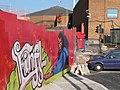 Newport, topical graffiti - geograph.org.uk - 696262.jpg