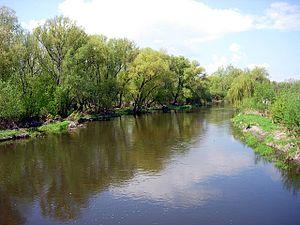 Nida (river) - Image: Nida Wislica 20060503
