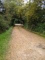 Now the coastal path - geograph.org.uk - 604633.jpg