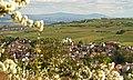 Ober-Ingelheim2014.jpg