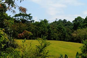 Obuasi - Obuasi Golf course in Ashanti.