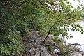 Ohiopyle State Park River Trail - panoramio (124).jpg
