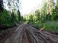 Okhanskiy r-n, Permskiy kray, Russia - panoramio (21).jpg