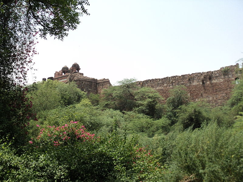 Purana Qila or Old Fort, as seen from National Zoo, Delhi - Purana Qila, Delhi