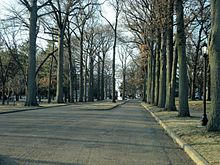 Tree-lined entrance of the Lindenwood University