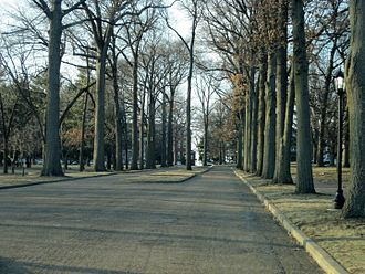 Lindenwood University - Tree-lined entrance in the historic part of the Lindenwood University campus