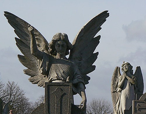On angels' wings - geograph.org.uk - 1195766.jpg