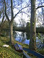 On the banks of the Little Ouse - geograph.org.uk - 607455.jpg