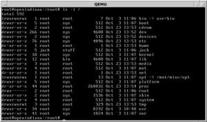 OpenIndiana - OpenIndiana operating in console mode. View of the root directory