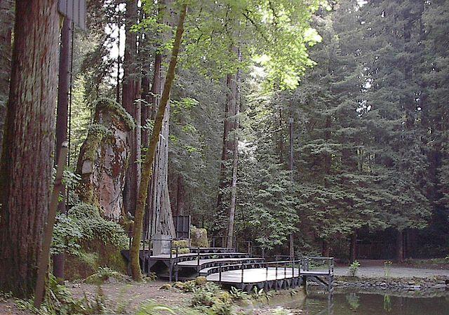 bohemian-grove
