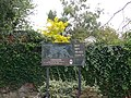 Owrtyn - Overton Sign - geograph.org.uk - 566923.jpg