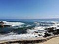 Pacific Grove IMG 20180408 112049.jpg