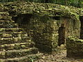 Palenque, Jungle Ruins.jpg