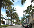 Palms on Rodeo Drive in Hollywood.jpg