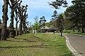 Parc François Mitterrand de Marcoussis le 15 avril 2015 - 30.jpg